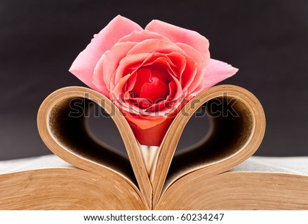 Pink Rose on Heart Folded Book Pages - stock photo