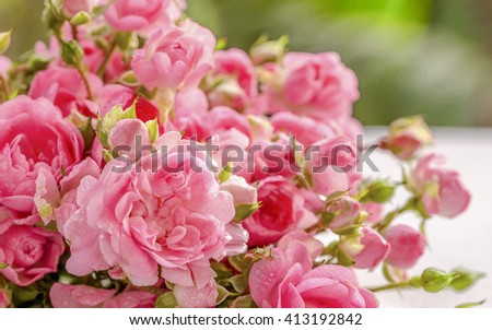 Pink rose  on wood with soft blur background.
