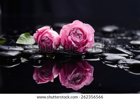 Pink rose with therapy stones  - stock photo