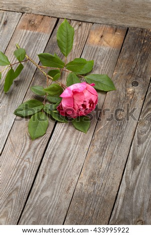 pink roses bouquet on a wooden  background - stock photo