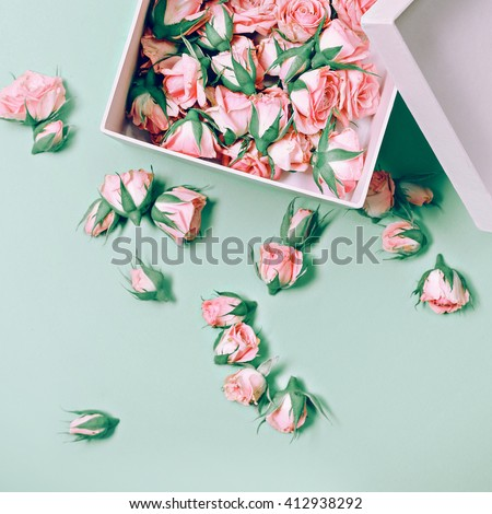 Pink Roses in a white Box. Fashion. Details Minimalism.