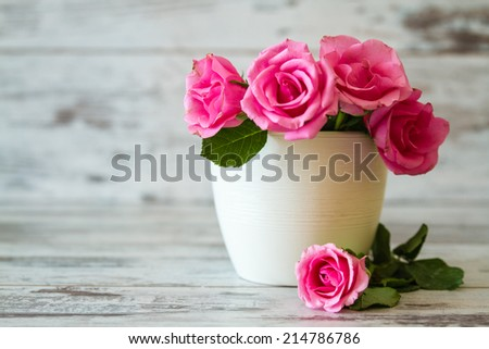 Pink roses in a white pot on white wooden background - stock photo