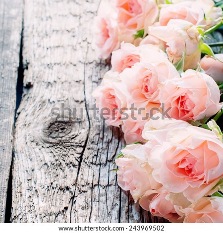Pink Roses on Wooden Table in sunshine light, toned image square - stock photo