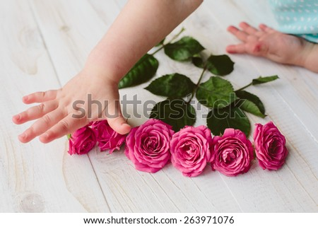 Pink roses with green leaves on wood background and child's hands