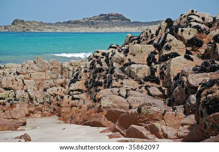 Pink sandstone rocks with mussels in french Brittany in a happy sunny sea landscape - stock photo
