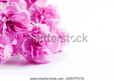 Pink soft flowers bouquet on white background. Spring, celebration. - stock photo