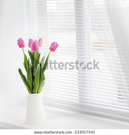 pink tulip in whit room - stock photo