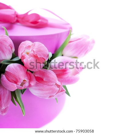 Pink tulips and gift box on a white background - stock photo