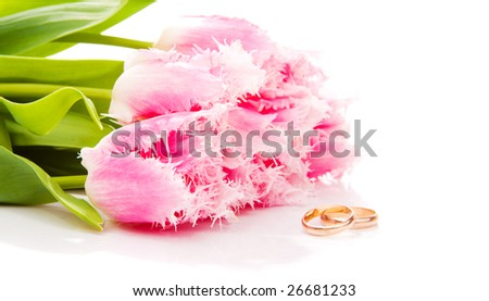 Pink tulips and golden rings, isolated - stock photo