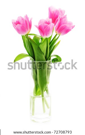 Pink tulips in a vase - stock photo