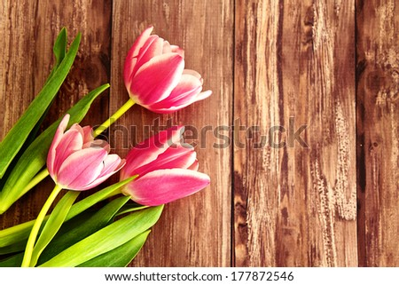 Pink tulips on a wooden background with space for text