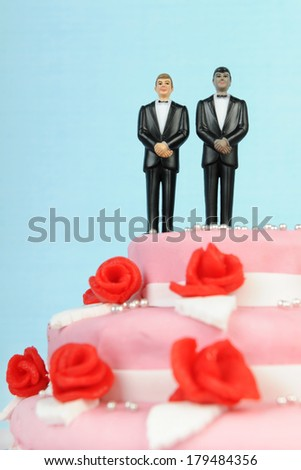Pink wedding cake with red roses and gay couple  isolated over white background - stock photo