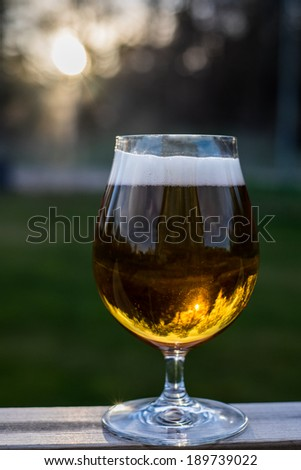 Pint of beer in sunset - stock photo