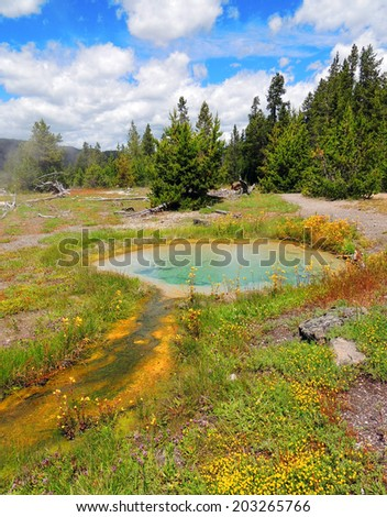 pinto spring in the cascade group of the upper geyser basin, yellowstone national park, wyoming - stock photo