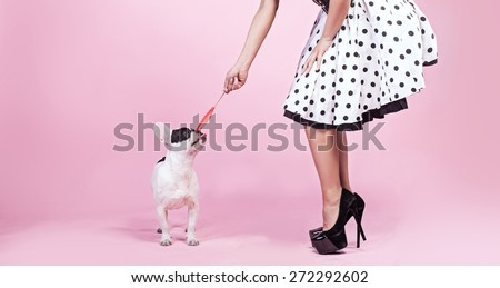Pinup fashionable woman;s legs with cute pug dog. Pink background. - stock photo