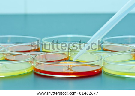Pipette over group of Petri dish - stock photo