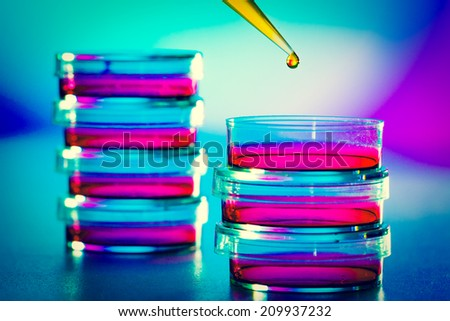 Pipette with drop of  liquid and petri dishes. - stock photo