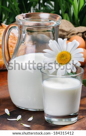 Pitcher of fresh milk with glass and daisy - stock photo