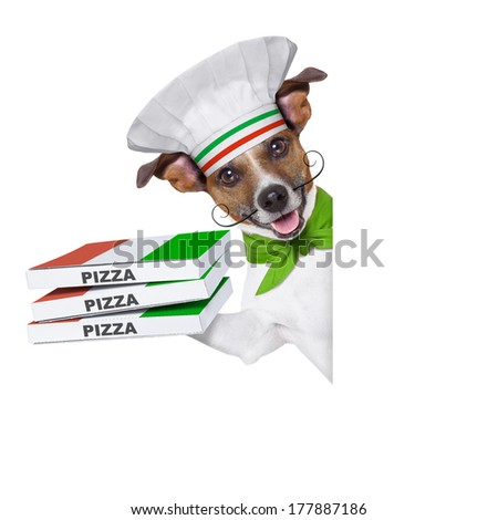 pizza delivery dog with a stack of pizza boxes behind a blank placard - stock photo