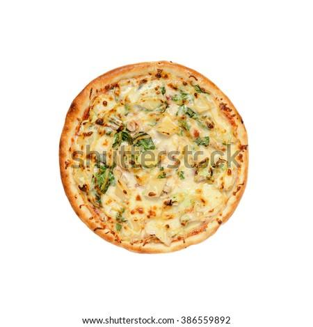 Pizza on white background - stock photo