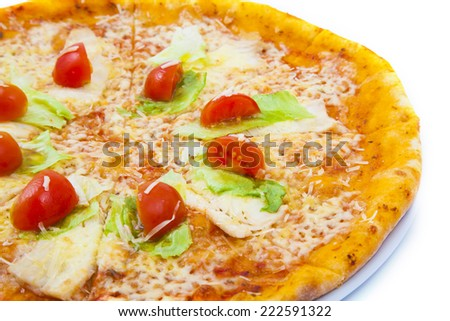 Pizza photo on a plate (set)  - stock photo