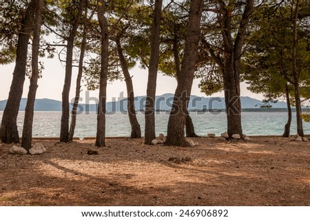 Place on the beach for camping, beach camping - stock photo
