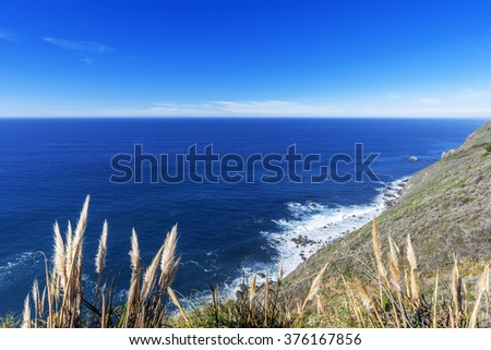 Placid blue seas, pampas grass, along a rocky coastline, blue sky & white cloud covered mountain tops, aquamarine waters, traveling the Big Sur Highway (Highway 1), on the California Central Coast. - stock photo