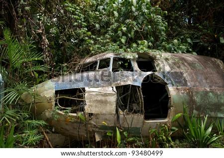 Plane Crashed Jungle Australia Stock Photo Royalty Free