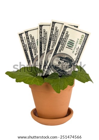Plant Growing Fictitious Money/ Money And Plant On White Background - stock photo
