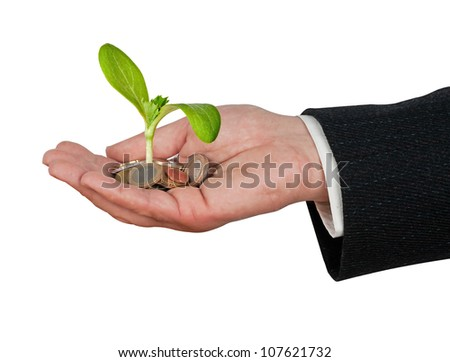 plant  growing from pile of coins - stock photo