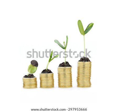Plant growing on gold coins , growth , development concept  - stock photo