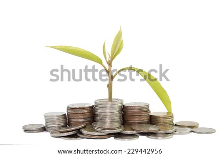 plant growing out of silver coins isolated on white