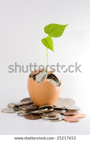 Plant grows out from an egg full with coins. Concept of investment, generating wealth. - stock photo