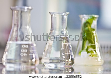 Plant growth experiments done in the laboratory - stock photo