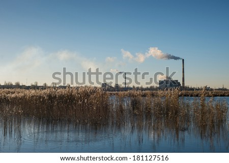 Plant on the river bank and large smoke clouds in the blue sky