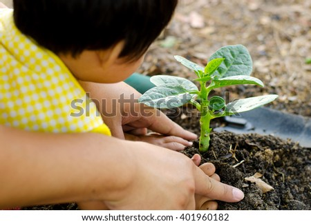 Plant,Soil,Planting,Seeding,Seedling,Close up Kid hand and father planting young tree