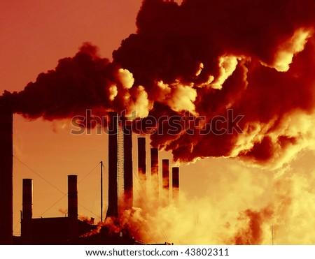 Plant with smoke - stock photo