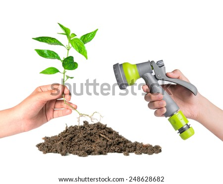 planted a tree - stock photo