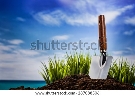 Planting a plant on a sunny day - stock photo