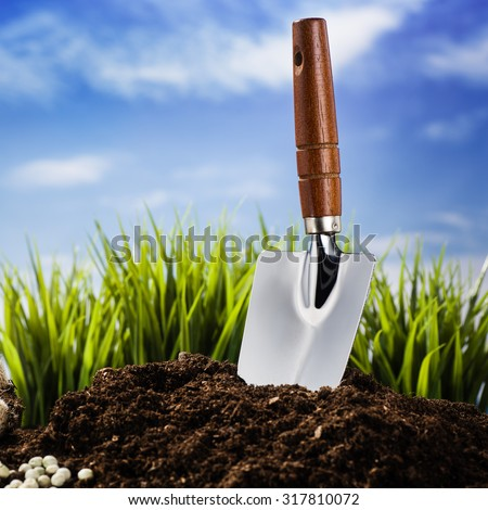 Planting a small plant on a pile of soil with blue, cloudy skye in the background.  Background for creative, advertising concept featuring gardening. - stock photo