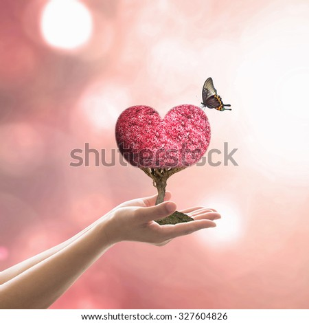 Planting red love heart on soil on human hand on blur natural background of autumn red seasonal foliage bokeh with flare vintage color tone: Woman holding arbor tree with butterfly: Valentine's day   - stock photo