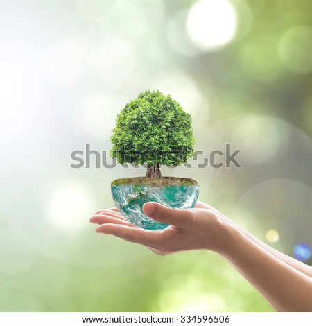 Planting tree on green globe ground on soil on female human hands on blur natural background of greenery with sun light : Environment conservation earth day concept: Element of image furnished by NASA - stock photo