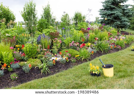Planting yellow celosia seedlings in a colorful formal landscaped garden wth a lush green flowerbed full of flowering and ornamental plants - stock photo