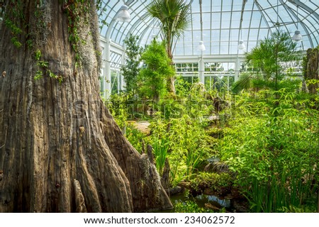 Plants and a small pond in this greenhouse create a complete ecosystem. - stock photo
