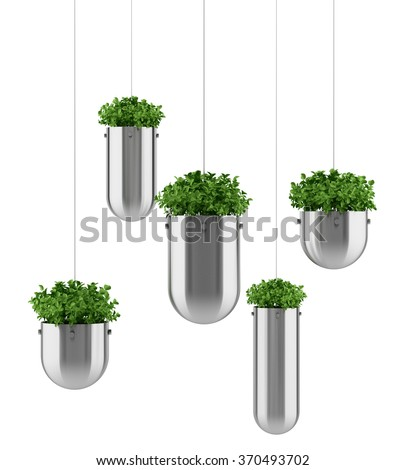plants in hanging pots isolated on white background - stock photo