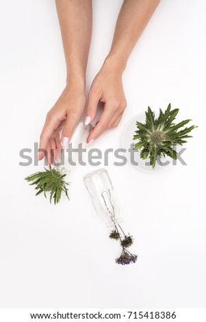 Plants in jars and girl's hands