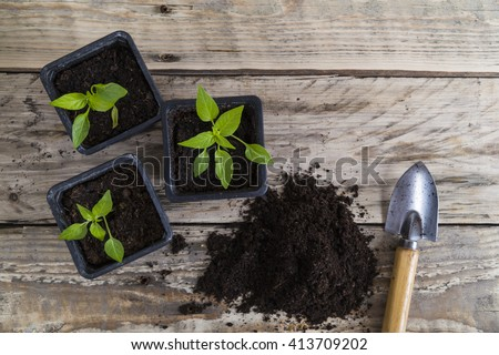 Plants with compost and trowel - stock photo
