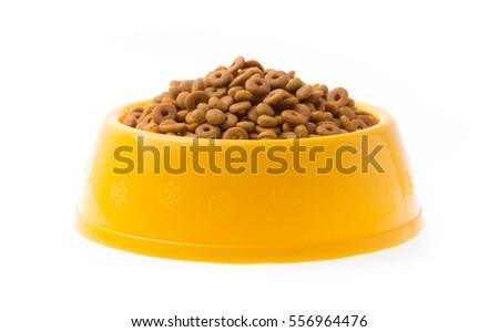 Selecting Dry Dog Food