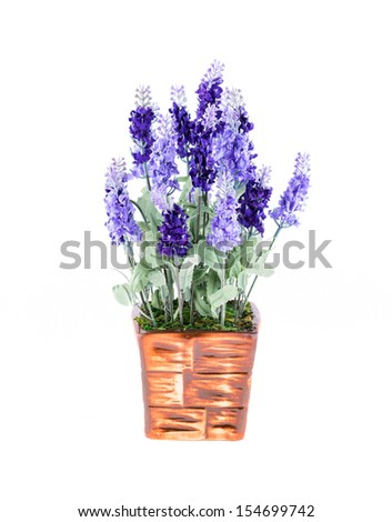 plastic flowerpot on white background