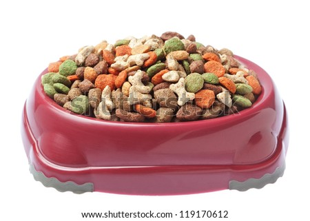 Plate of food for cats and dogs. On a white background. - stock photo